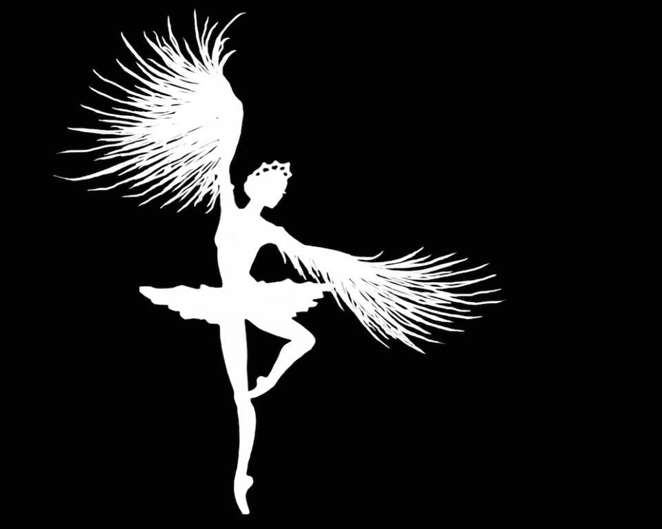 """Grafik für T-Shirt inspiriert von """" Black Swan"""""""